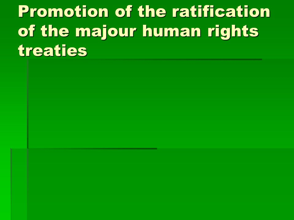 Promotion of the ratification of the majour human rights treaties