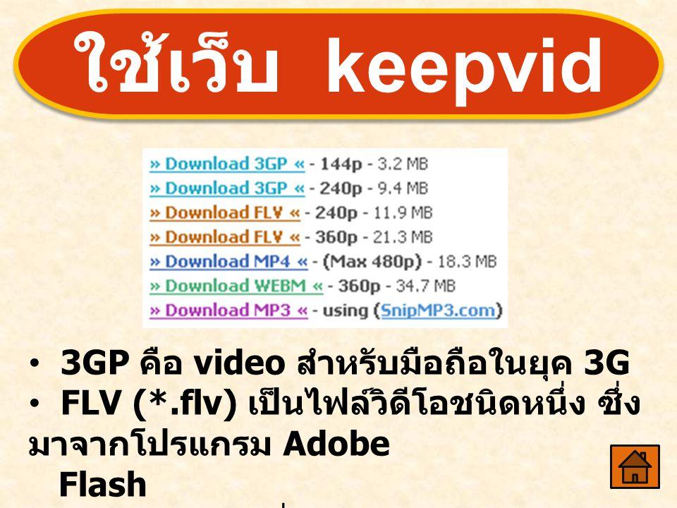 • 3GP คือ video สำหรับมือถือในยุค 3G • FLV (*.flv) เป็นไฟล์วิดีโอชนิดหนึ่ง ซึ่ง มาจากโปรแกรม Adobe Flash • MP3 คือ ไฟล์ที่มีแต่เสียง