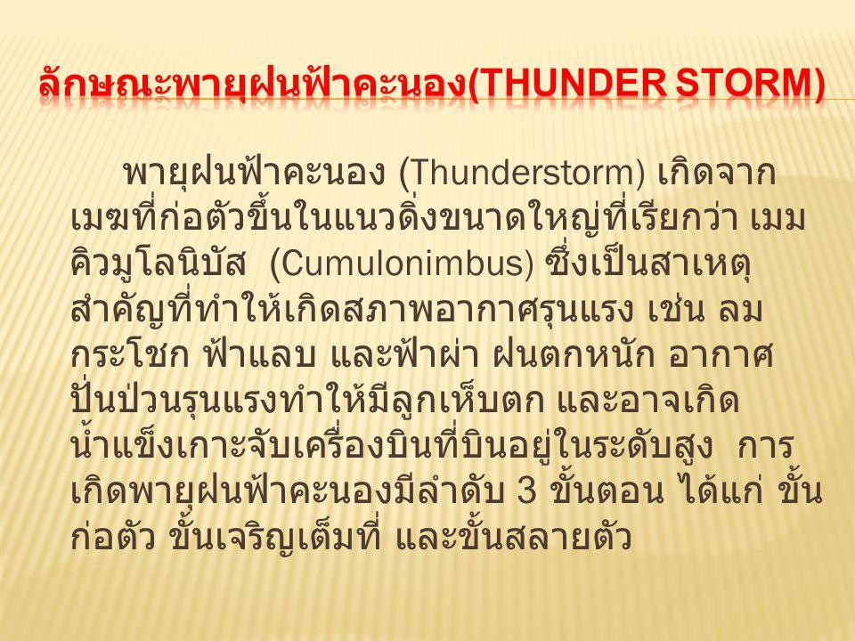 พายุฝนฟ้าคะนอง (Thunderstorm) เกิดจาก เมฆที่ก่อตัวขึ้นในแนวดิ่งขนาดใหญ่ที่เรียกว่า เมม คิวมูโลนิบัส (Cumulonimbus) ซึ่งเป็นสาเหตุ สำคัญที่ทำให้เกิดสภา