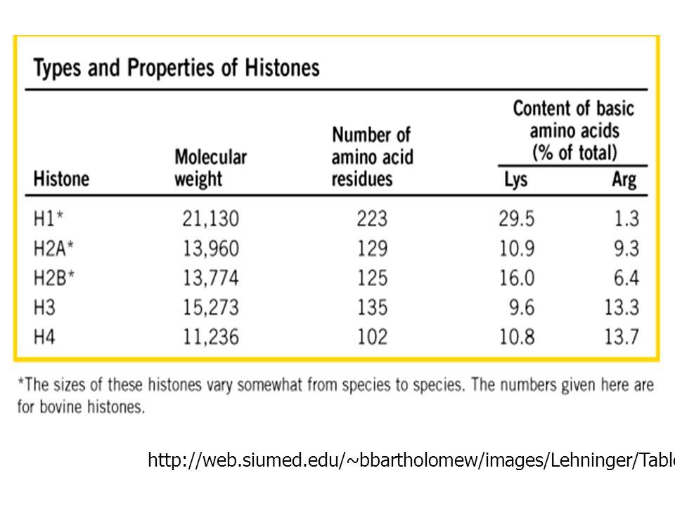 http://web.siumed.edu/~bbartholomew/images/Lehninger/Table%2024-03.GIF