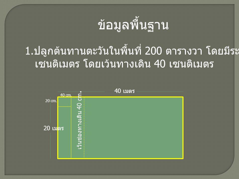 ยกแปลงปลูกได้ 50 แถว มาจาก ด้านยาวของพื้นที่ปลูก 40 เมตร (4,000 เซนติเมตร ) ด้านยาวของระยะปลูก 40 เซนติเมตร ด้านยาวของระยะทางเดิน 40 เซนติเมตร จากนั้นนำ 4,000 หารด้วย 40 จะเป็น 100 แถว เนื่องจากต้องกันพื้นที่สำหรับทางเดินและ ระยะปลูกเท่ากัน จึงนำ 2 ไปหาร จำนวน แถว เพื่อให้ได้จำนวนแถวที่ใช้ปลูกจริง ดังนั้น จำนวนแถวที่ใช้ปลูก คือ 100/2 = 50 แถว