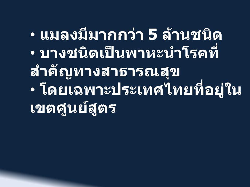 • แมลงมีมากกว่า 5 ล้านชนิด • บางชนิดเป็นพาหะนำโรคที่ สำคัญทางสาธารณสุข • โดยเฉพาะประเทศไทยที่อยู่ใน เขตศูนย์สูตร