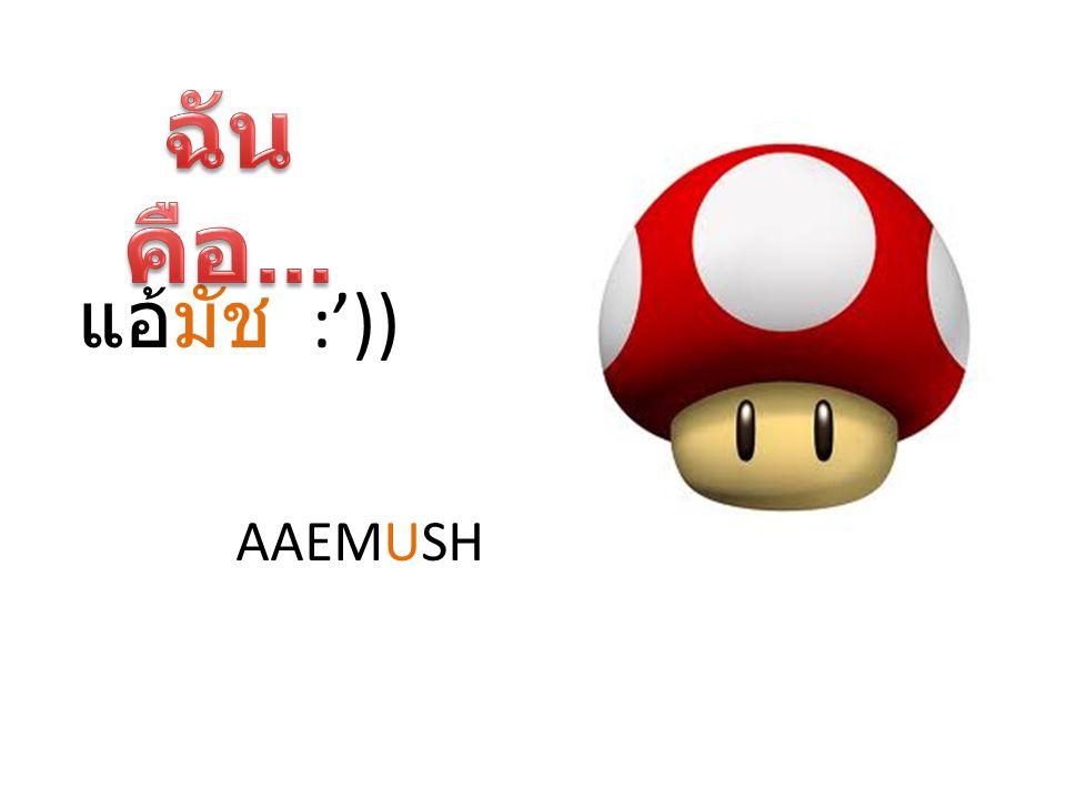 แอ้มัช :')) AAEMUSH