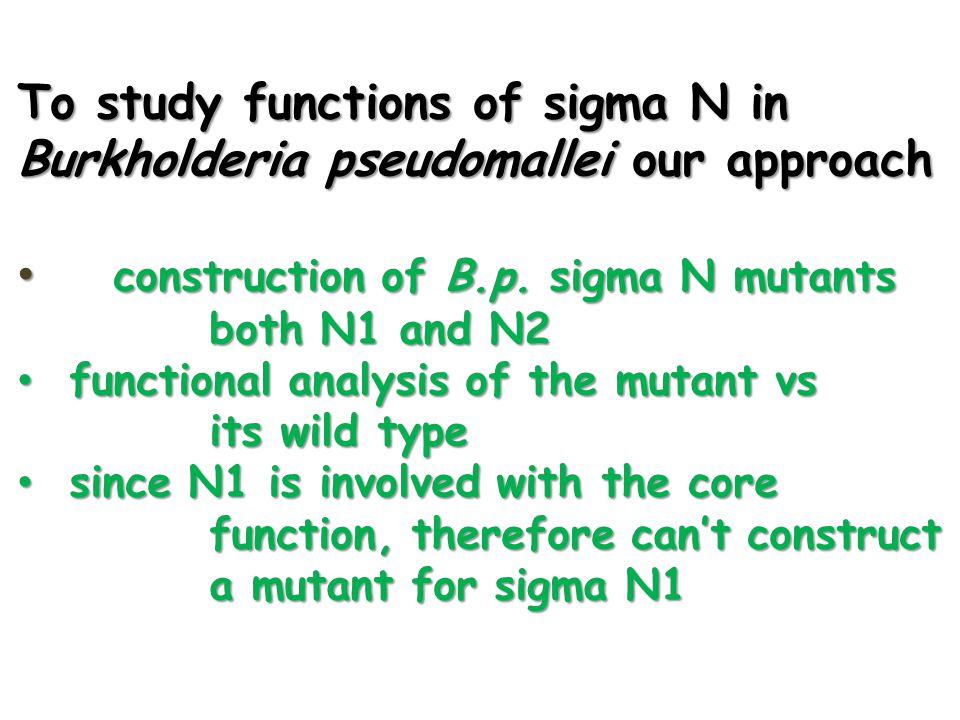 To study functions of sigma N in Burkholderia pseudomallei our approach • construction of B.p. sigma N mutants both N1 and N2 • functional analysis of