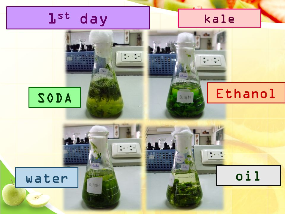SODA Ethanol water oil 1 st day kale