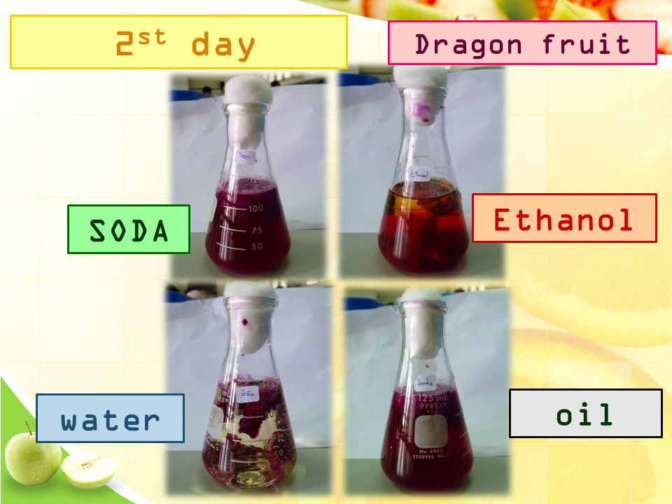 2 st day SODA Ethanol water oil Dragon fruit