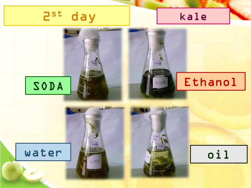 2 st day SODA Ethanol water oil kale