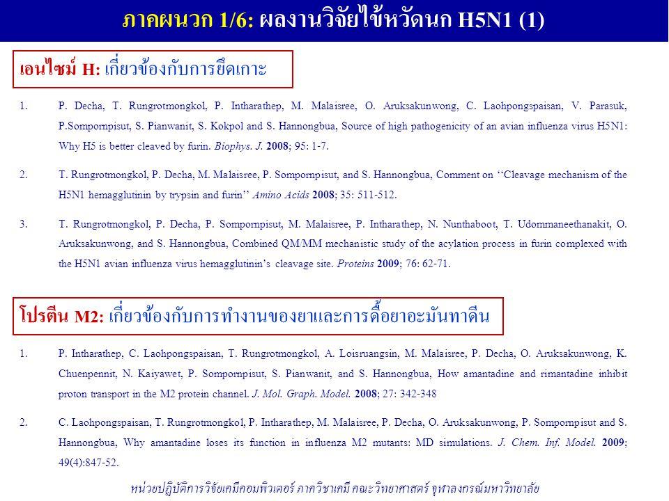 ภาคผนวก 1/6: ผลงานวิจัยไข้หวัดนก H5N1 (1) เอนไซม์ H: เกี่ยวข้องกับการยึดเกาะ โปรตีน M2: เกี่ยวข้องกับการทำงานของยาและการดื้อยาอะมันทาดีน หน่วยปฏิบัติการวิจัยเคมีคอมพิวเตอร์ ภาควิชาเคมี คณะวิทยาศาสตร์ จุฬาลงกรณ์มหาวิทยาลัย 1.