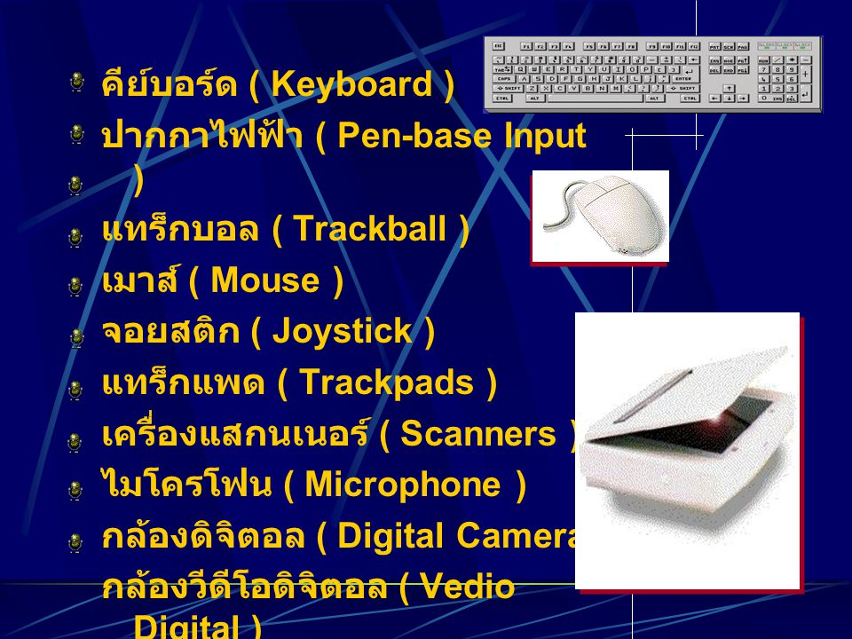 คีย์บอร์ด ( Keyboard ) ปากกาไฟฟ้า ( Pen-base Input ) แทร็กบอล ( Trackball ) เมาส์ ( Mouse ) จอยสติก ( Joystick ) แทร็กแพด ( Trackpads ) เครื่องแสกนเนอร์ ( Scanners ) ไมโครโฟน ( Microphone ) กล้องดิจิตอล ( Digital Camera ) กล้องวีดีโอดิจิตอล ( Vedio Digital )