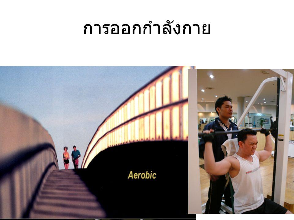 ศาสตร์แห่งความสดใส • อาหาร • การออกกำลังกาย