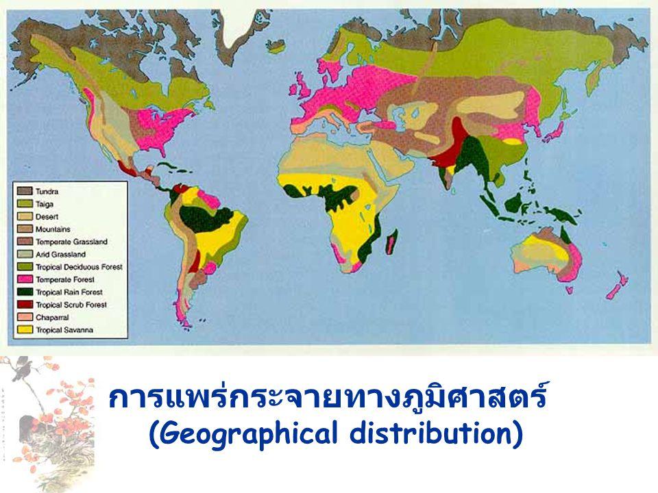 การแพร่กระจายทางภูมิศาสตร์ (Geographical distribution)
