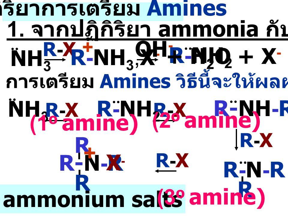 ปฏิกิริยาการเตรียม Amines NH 3 R-XR-XR-XR-X R-XR-X R-XR-X R-NH 3,X - + OH - R-NH 2 การเตรียม Amines วิธีนี้จะให้ผลผลิตอื่นๆเกิดขึ้น R-XR-X Quaternary ammonium salts R-N-R R R + X-X- R-NH 2 (1 o amine) R-NH-R (2 o amine) R-N-RR-N-R R (3 o amine) + H 2 O + X - 1.