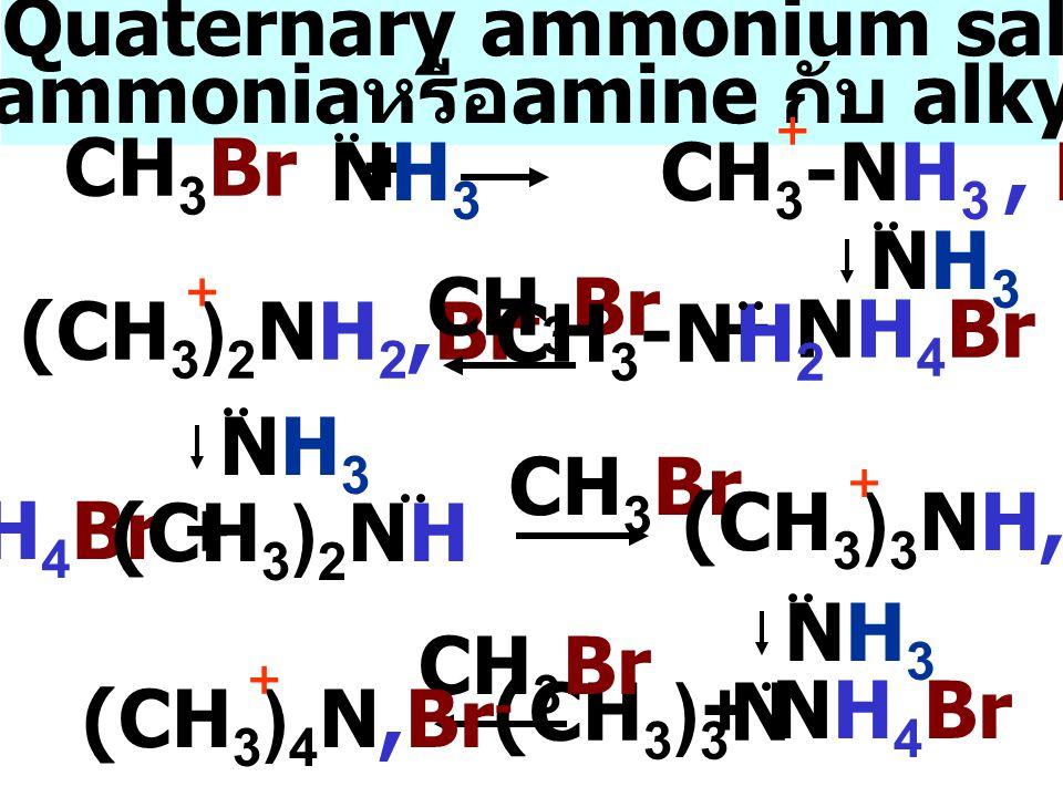 เตรียม Quaternary ammonium salts จาก ปฏิกิริยา ammonia หรือ amine กับ alkyl halide CH 3 Br + NH3NH3 CH 3 -NH 3, Br - + (CH 3 ) 2 NH 2,Br - + NH3NH3 + NH 4 Br CH 3 Br NH3NH3 NH 4 Br + CH 3 Br (CH 3 ) 3 NH,Br - + NH3NH3 + NH 4 Br CH 3 -NH 2 (CH 3 ) 2 NH (CH 3 ) 3 N CH 3 Br (CH 3 ) 4 N,Br - +