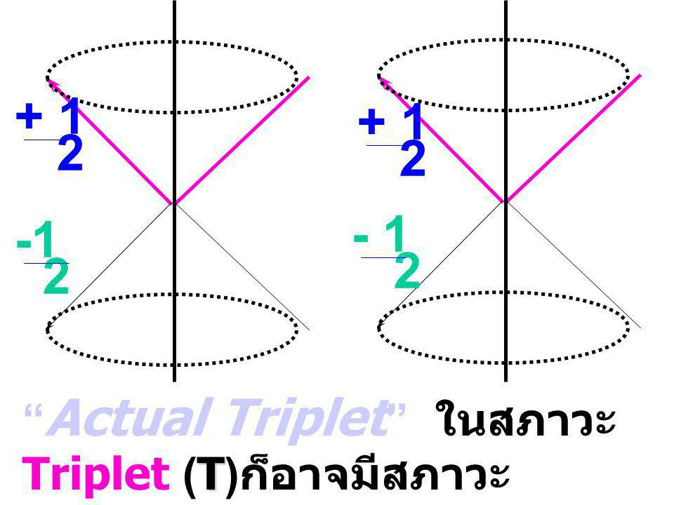 + 1 2 + 1 2 2 - 1 2 T T Actual Triplet ในสภาวะ Triplet (T) ก็อาจมีสภาวะ singlet แอบแฝงอยู่ T = T + s