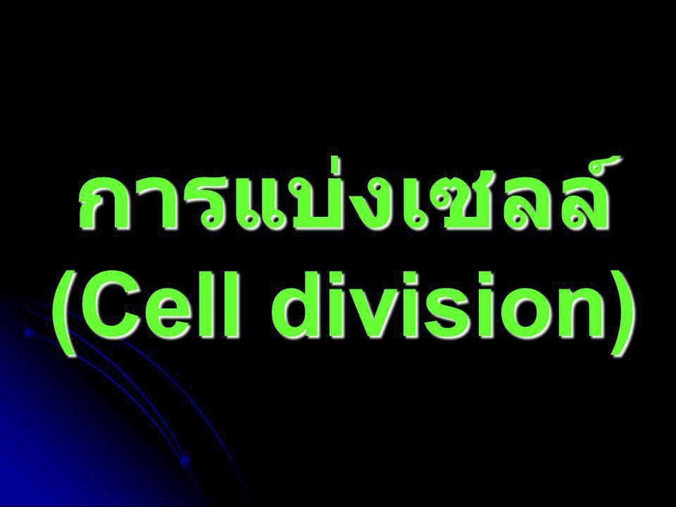 References   ปิยมา ทัศนสุวรรณ.เอกสารประกอบการสอน หลักชีววิทยา - การแบ่งเซลล์.