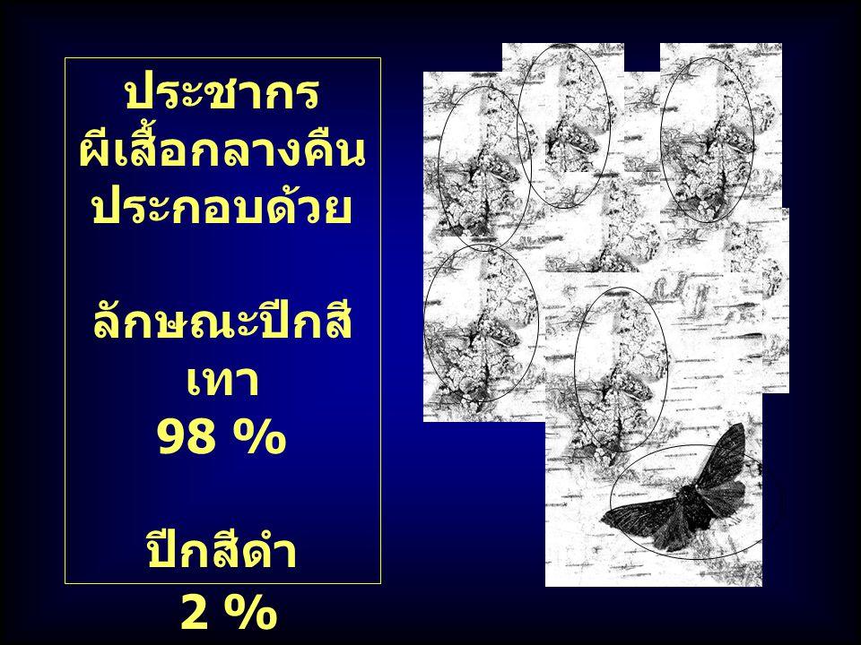 ประชากร ผีเสื้อกลางคืน ประกอบด้วย ลักษณะปีกสี เทา 98 % ปีกสีดำ 2 %