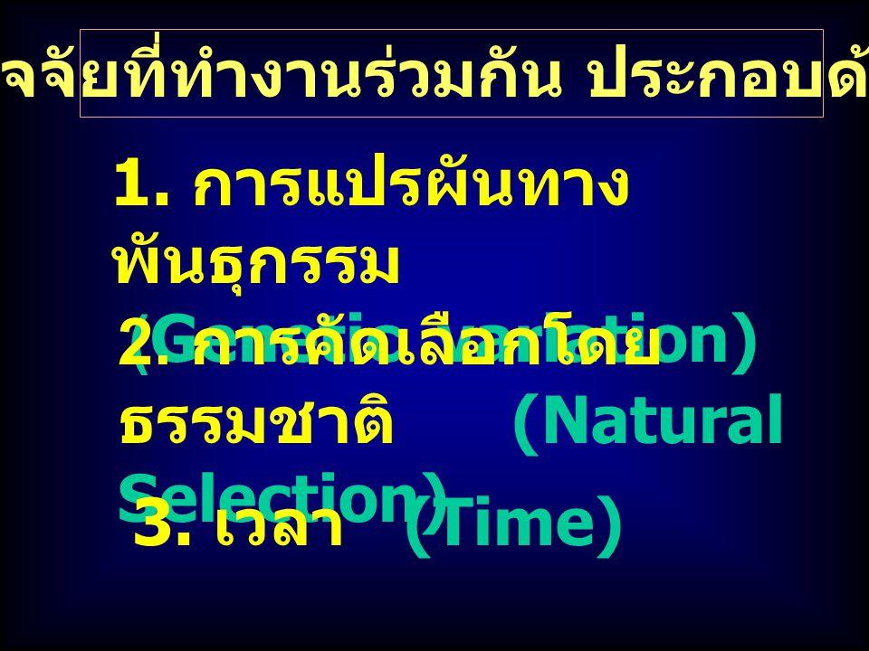 ปัจจัยที่ทำงานร่วมกัน ประกอบด้วย 1. การแปรผันทาง พันธุกรรม (Genetic variation) 2. การคัดเลือกโดย ธรรมชาติ (Natural Selection) 3. เวลา (Time)
