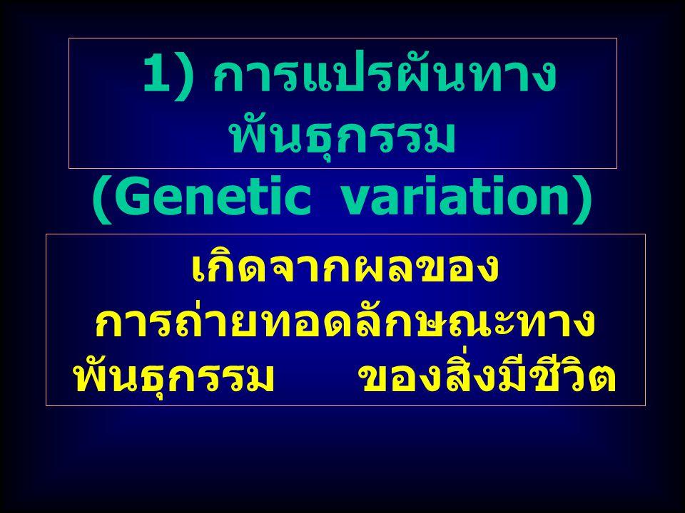 1) การแปรผันทาง พันธุกรรม (Genetic variation) เกิดจากผลของ การถ่ายทอดลักษณะทาง พันธุกรรม ของสิ่งมีชีวิต