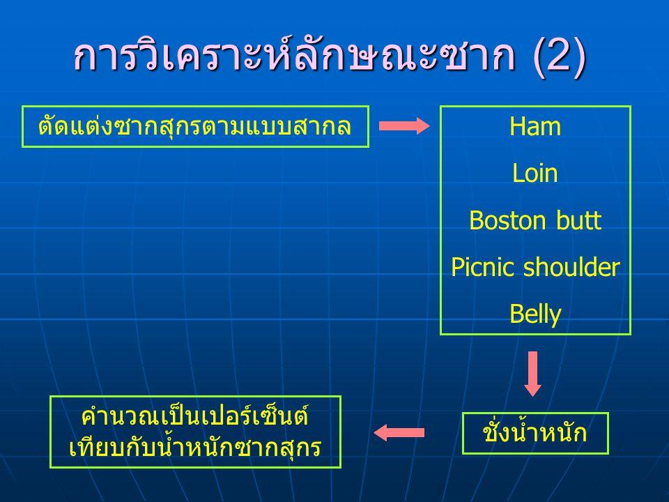 การวิเคราะห์ลักษณะซาก (2) ตัดแต่งซากสุกรตามแบบสากล ชั่งน้ำหนัก Ham Loin Boston butt Picnic shoulder Belly คำนวณเป็นเปอร์เซ็นต์ เทียบกับน้ำหนักซากสุกร