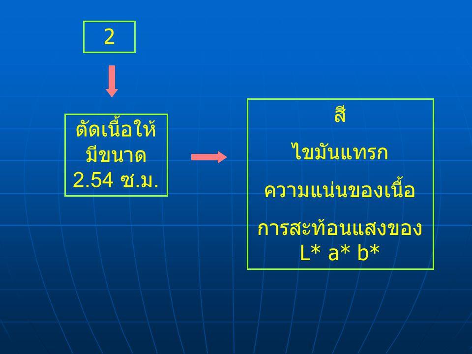 2 ตัดเนื้อให้ มีขนาด 2.54 ซ. ม. สี ไขมันแทรก ความแน่นของเนื้อ การสะท้อนแสงของ L* a* b*