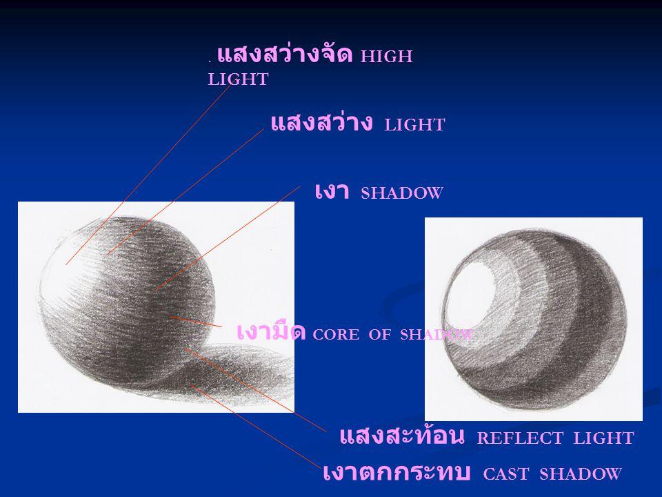 . แสงสว่างจัด HIGH LIGHT เงาตกกระทบ CAST SHADOW แสงสว่าง LIGHT แสงสะท้อน REFLECT LIGHT เงา SHADOW เงามืด CORE OF SHADOW