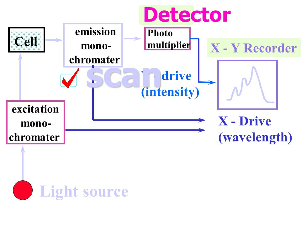 Cell emission mono- chromater Photo multiplier X - Y Recorder X - Drive (wavelength) Light source Y - drive (intensity) excitation mono- chromater Detector scan