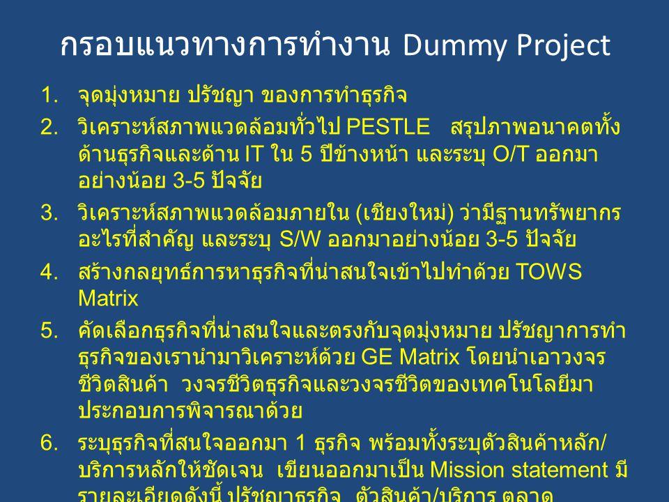 กรอบแนวทางการทำงาน Dummy Project ต่อ 7.