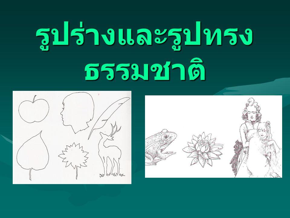 รูปร่างและรูปทรง ธรรมชาติ