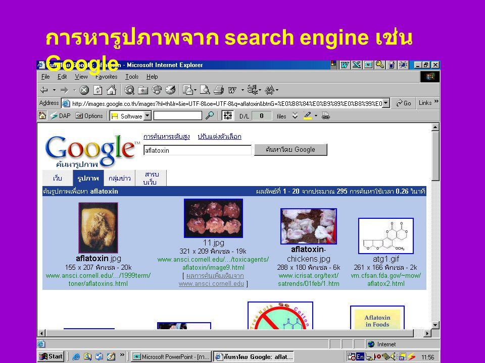 การหารูปภาพจาก search engine เช่น Google