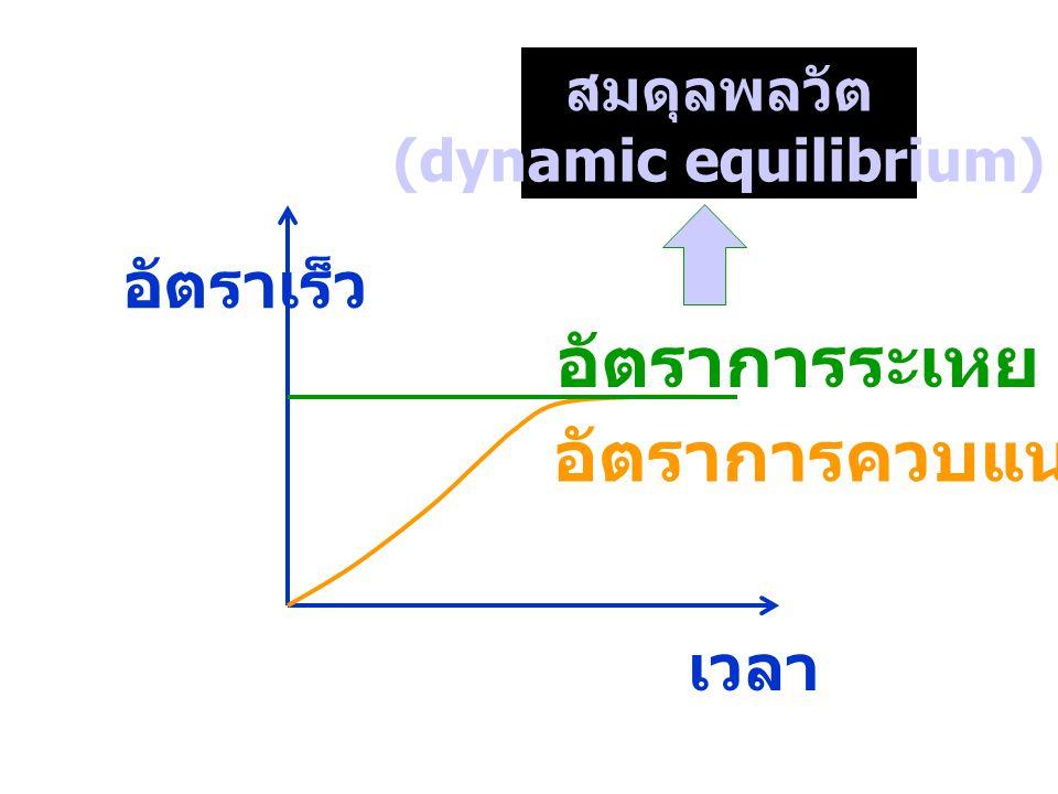 เวลา อัตราเร็ว อัตราการระเหย สมดุลพลวัต (dynamic equilibrium) อัตราการควบแน่น