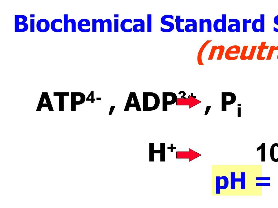H 2 O + ATP 4- ฎ ADP 3- + HPO 2 -4 + H + Chemical Standard State Solutes : ATP 4-, ADP 3-, P i, H + ต่างก็มีความเข้มข้น 1 M แต่กรณี [H + ] = 1 Molar p