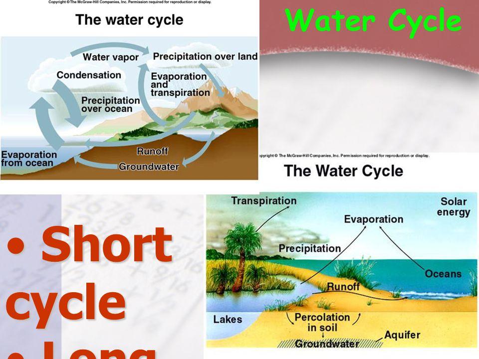 Water Cycle • Short cycle • Long cycle