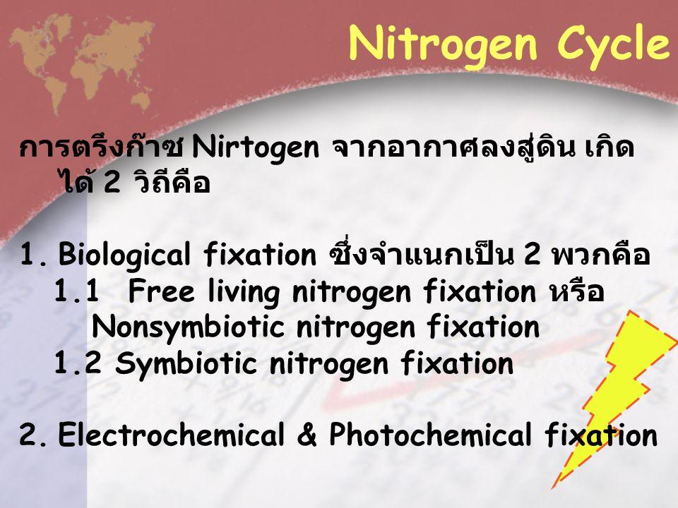 การตรึงก๊าซ Nirtogen จากอากาศลงสู่ดิน เกิด ได้ 2 วิถีคือ 1.Biological fixation ซึ่งจำแนกเป็น 2 พวกคือ 1.1 Free living nitrogen fixation หรือ Nonsymbiotic nitrogen fixation 1.2 Symbiotic nitrogen fixation 2.Electrochemical & Photochemical fixation Nitrogen Cycle