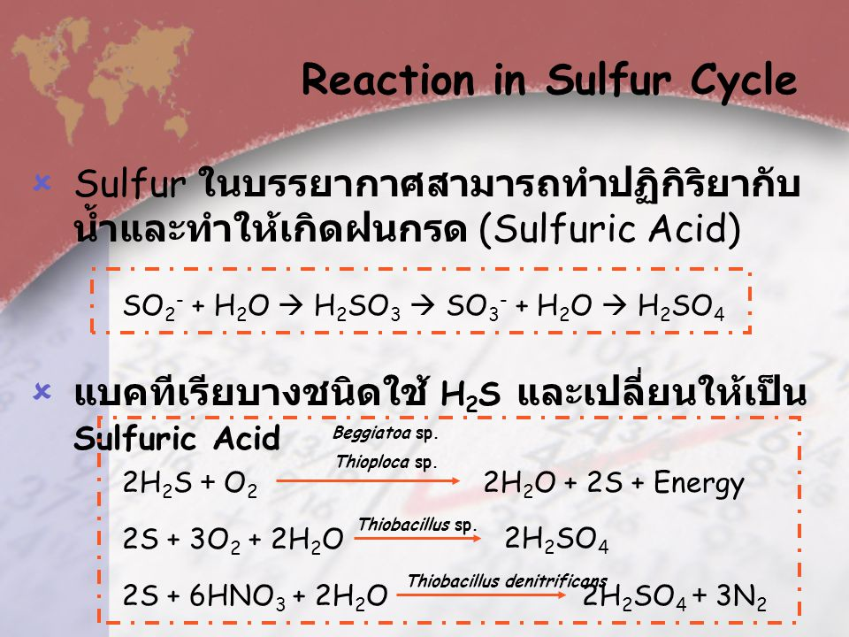  Sulfur is the main component in many kinds of amino acid.  The livings can use sulfur in form that is soluble in water, such as SO 4 2-, or inorgan