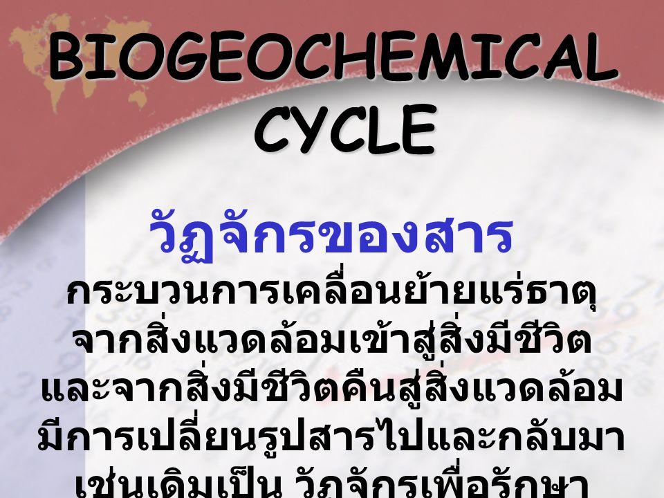 BIOGEOCHEMICAL CYCLE CYCLE วัฏจักรของสาร กระบวนการเคลื่อนย้ายแร่ธาตุ จากสิ่งแวดล้อมเข้าสู่สิ่งมีชีวิต และจากสิ่งมีชีวิตคืนสู่สิ่งแวดล้อม มีการเปลี่ยนรูปสารไปและกลับมา เช่นเดิมเป็น วัฏจักรเพื่อรักษา สมดุลของธรรมชาติ