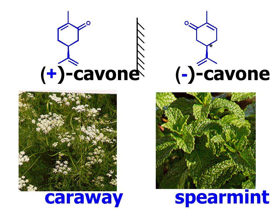 (+)-cavone(-)-cavone * caraway spearmint