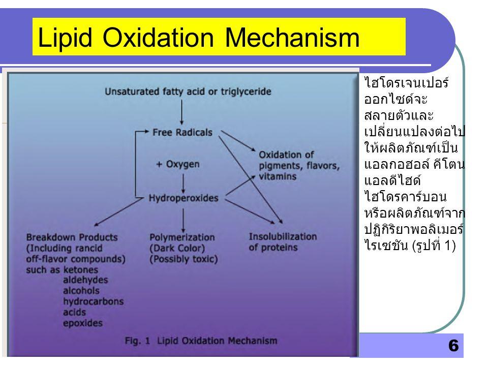 6 Lipid Oxidation Mechanism ไฮโดรเจนเปอร์ ออกไซด์จะ สลายตัวและ เปลี่ยนแปลงต่อไป ให้ผลิตภัณฑ์เป็น แอลกอฮอล์ คีโตน แอลดีไฮด์ ไฮโดรคาร์บอน หรือผลิตภัณฑ์จ