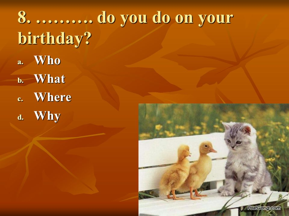 8. ………. do you do on your birthday? a. Who b. What c. Where d. Why