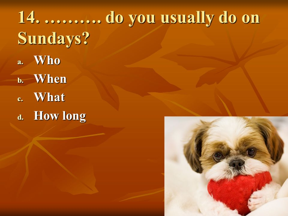 14. ………. do you usually do on Sundays? a. Who b. When c. What d. How long