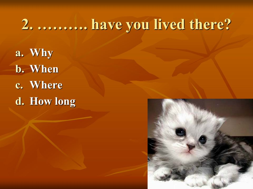 3. ………. do you live with? a.Who b.When c.Where d.How much