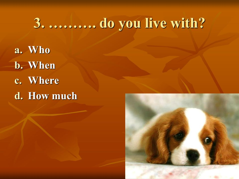 4. ………. people are there in your family? a.How much b.How many c.How long d.Which