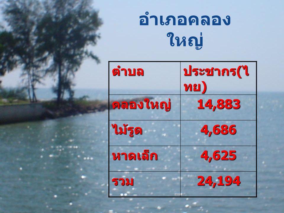 อำเภอคลอง ใหญ่ตำบล ประชากร ( ไ ทย ) คลองใหญ่14,883 ไม้รูด4,686 หาดเล็ก4,625 รวม24,194