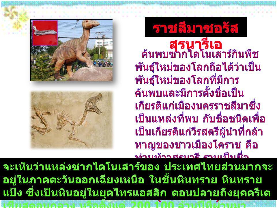 จะเห็นว่าแหล่งซากไดโนเสาร์ของ ประเทศไทยส่วนมากจะ อยู่ในภาคตะวันออกเฉียงเหนือ ในชั้นหินทราย หินทราย แป้ง ซึ่งเป็นหินอยู่ในยุคไทรแอสสิก ตอนปลายถึงยุคครี
