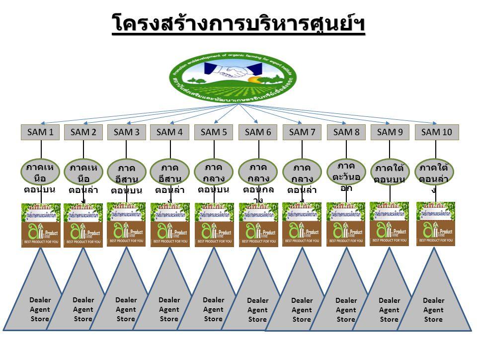 ผังโครงสร้างการกระจายสินค้า สถาบันส่งเสริมและพัฒนาเกษตรอินทรีย์เพื่อส่งออก ศูนย์ประจำพื้นที่ เครือข่ายพันธมิตรทางธุรกิจ ส่งสินค้าเข้า -Deale r -Agent -Store -Dealer -Agent -Store -Deale r -Agent -Store -Dealer -Agent -Store -Deale r -Agent -Store 12345