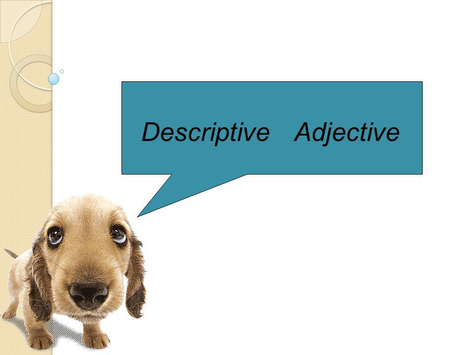 Descriptive adjective DDescriptive adjective หมายถึง คำ ที่ใช้บอกลักษณะ หรือ คุณภาพ ของคน สัตว์ สิ่งของ และ สถานที่ เพื่อให้รู้ว่า นามนั้นมีลักษณะ อย่างไร เช่น good bad เป็นต้น