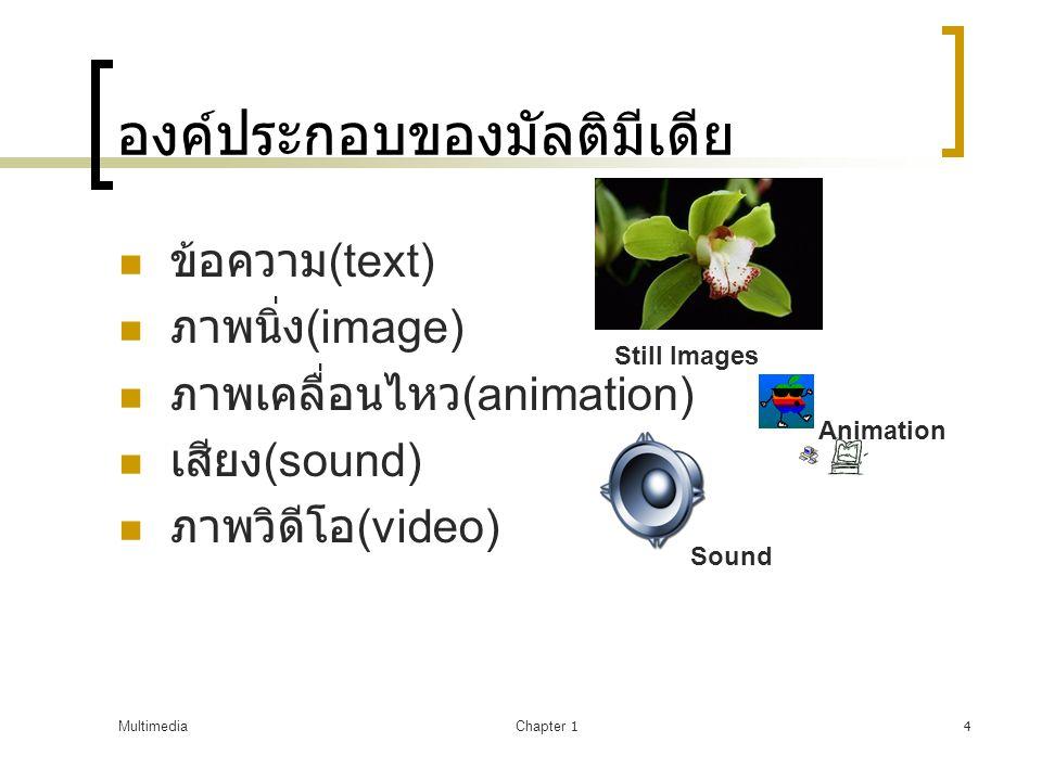 MultimediaChapter 14 องค์ประกอบของมัลติมีเดีย  ข้อความ (text)  ภาพนิ่ง (image)  ภาพเคลื่อนไหว (animation)  เสียง (sound)  ภาพวิดีโอ (video) Still Images Sound Animation