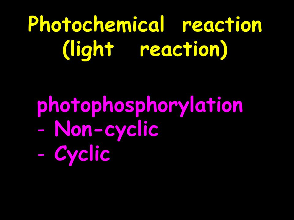 Photochemical reaction (light reaction) photophosphorylation - Non-cyclic - Cyclic