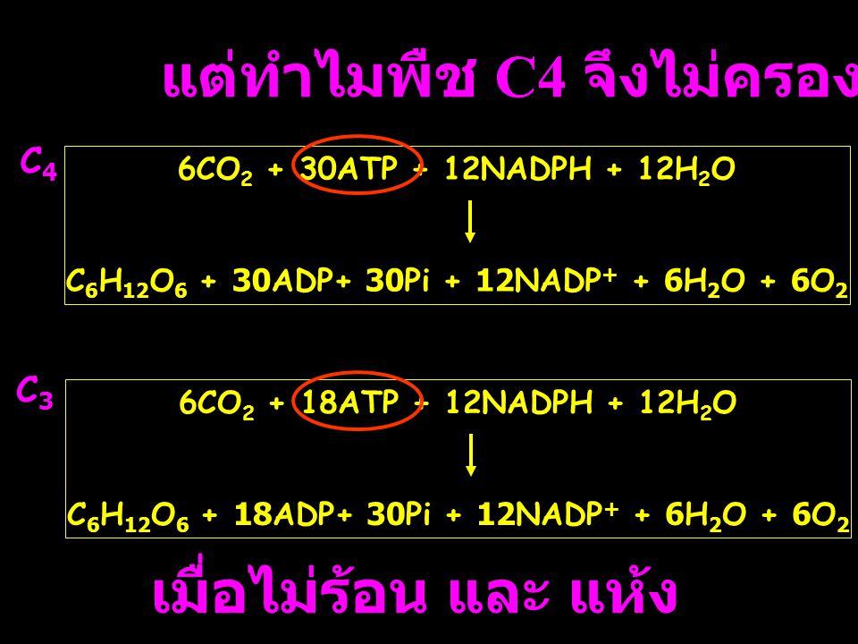 แต่ทำไมพืช C4 จึงไม่ครองโลก 6CO 2 + 30ATP + 12NADPH + 12H 2 O C 6 H 12 O 6 + 30ADP+ 30Pi + 12NADP + + 6H 2 O + 6O 2 6CO 2 + 18ATP + 12NADPH + 12H 2 O