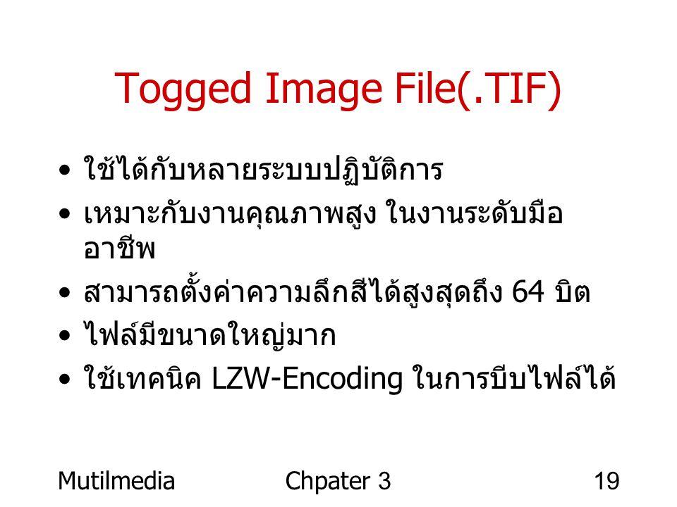 MutilmediaChpater 319 Togged Image File(.TIF) • ใช้ได้กับหลายระบบปฏิบัติการ • เหมาะกับงานคุณภาพสูง ในงานระดับมือ อาชีพ • สามารถตั้งค่าความลึกสีได้สูงส