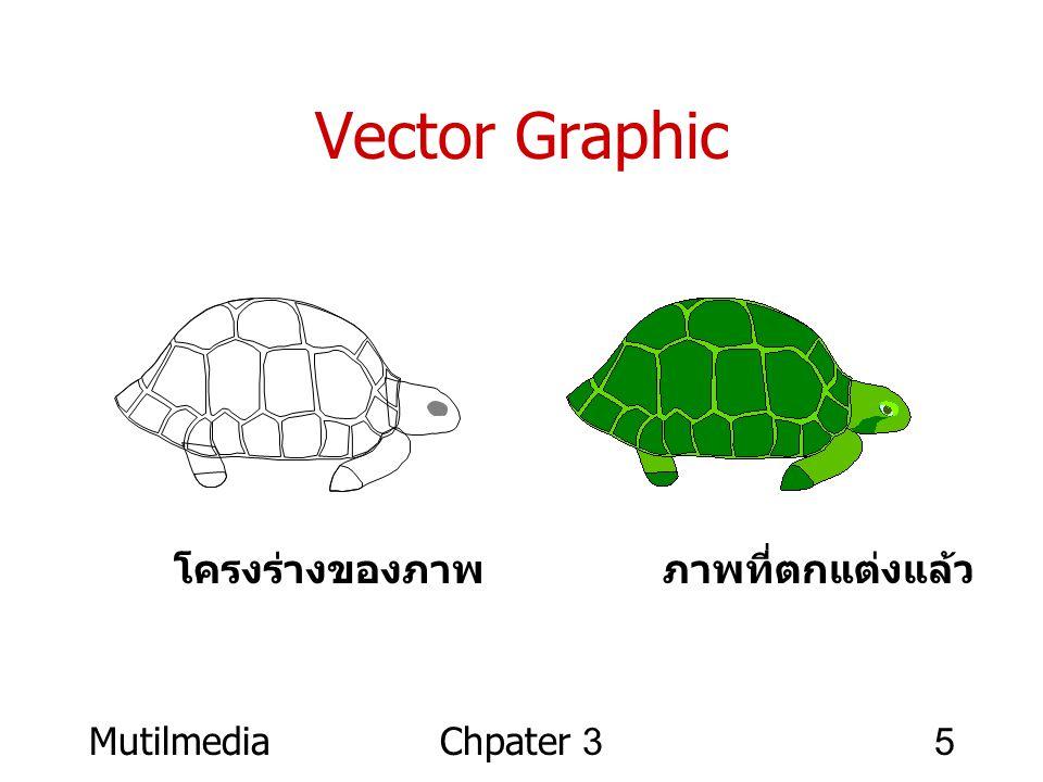 MutilmediaChpater 35 Vector Graphic โครงร่างของภาพ ภาพที่ตกแต่งแล้ว